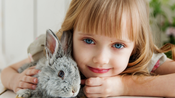 Ideal Pets for Children: How to Choose Your Child's First Pet