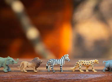 Themed Learning: Wild Animal Activities for Children