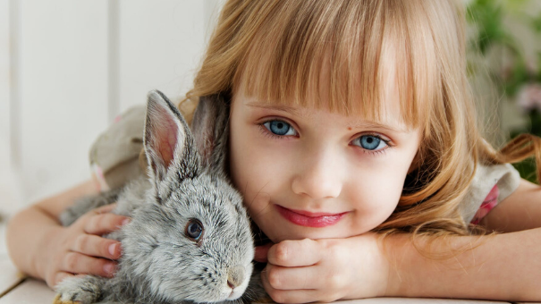 How to Look After a Pet: Pet Care for Children