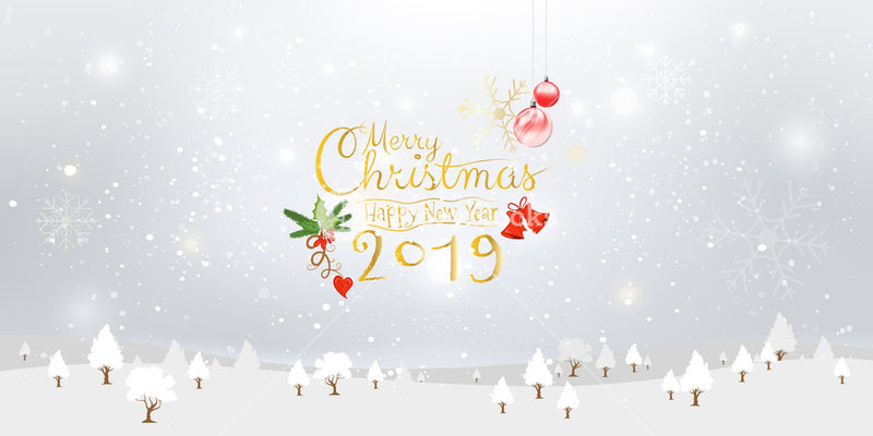 Merry Christmas & Happy New Year 2019