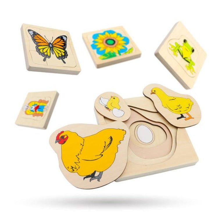 Wooden Butterfly Growth Layered Puzzle - iKids