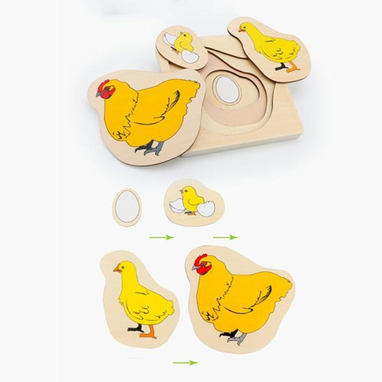 Wooden Chicken Growth Layered Puzzle - iKids