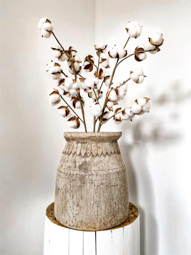 Natural Dried Cotton Flower Stems