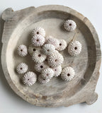 Sea Urchin - White Knobby