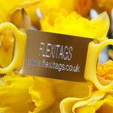 Large-collars upto 40mm wide - Flexitags