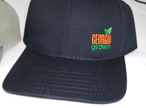 Front view of Baseball cap, solid panels with small Georgia Grown logo