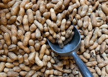 Load image into Gallery viewer, 9-Bag Roasted Peanut Bundle