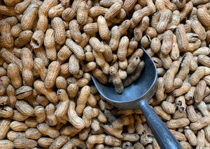 Roasted Peanut Bundle (9LB.)