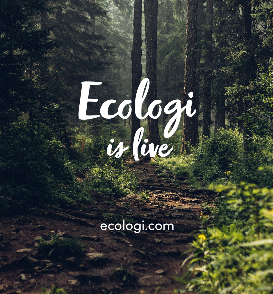 Ecologi - Tree with every candle order