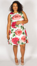 Venice Ivory Red Rose Skater Dress