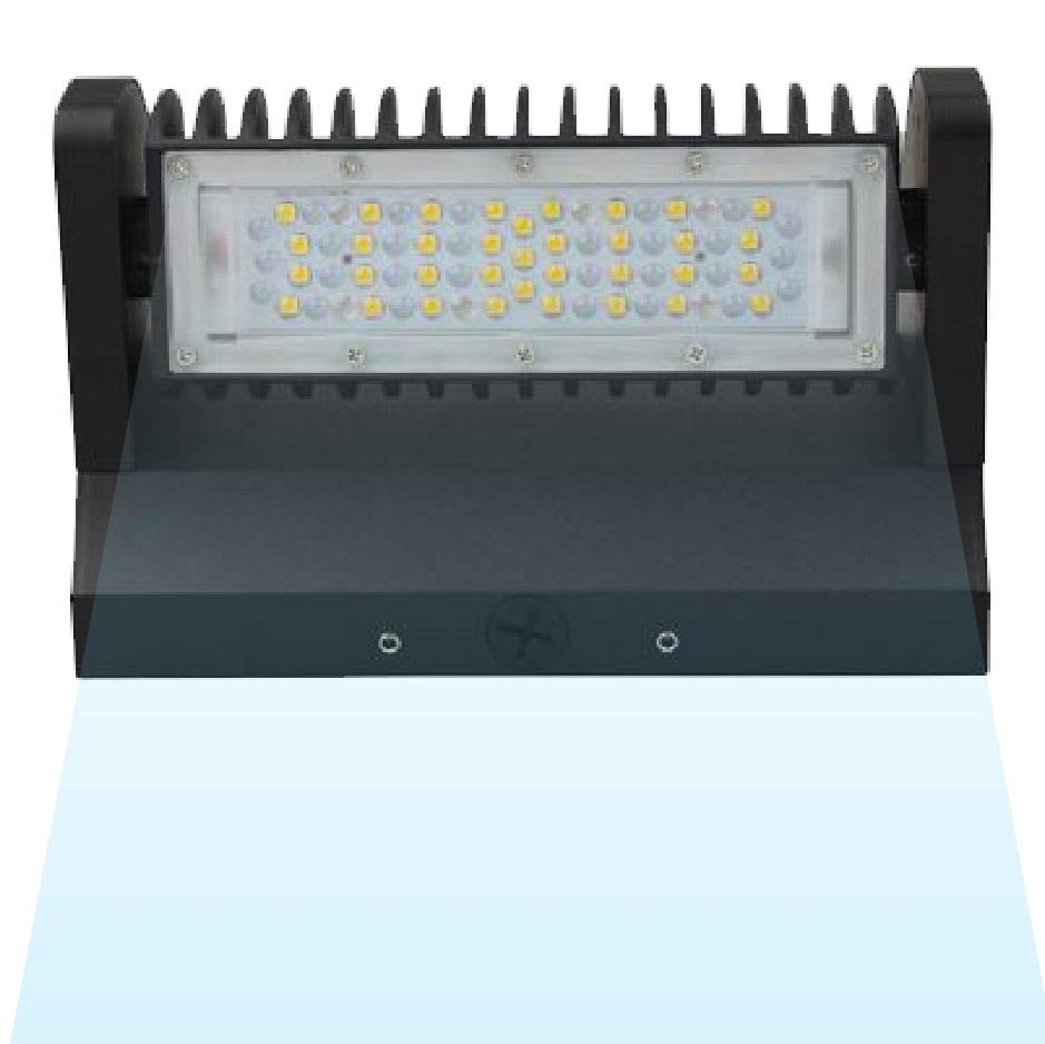 LED Rotatable Wall Pack