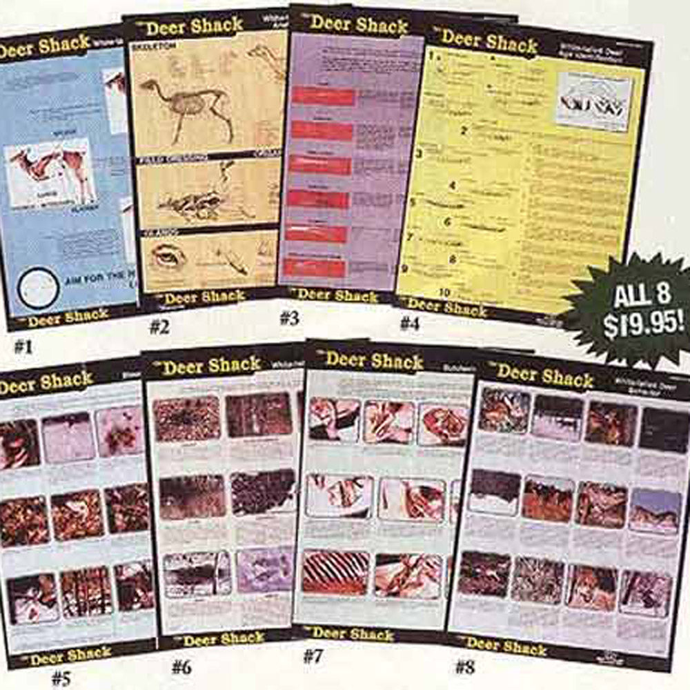 Whitetail Deer Instructional Posters - Set of 8 Educational Posters