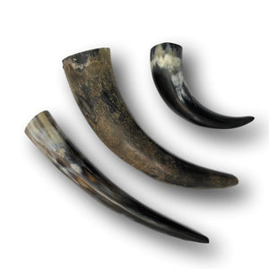 Genuine Water Buffalo Horns - Natural or Polished