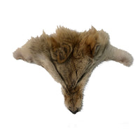 Authentic Coyote Face - Genuine Fur Animal Face for Crafts and Costumes