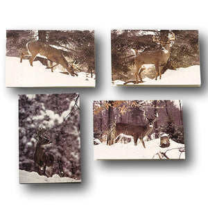Deer Hunter Greeting Cards - Whitetail Deer Stationary Note Cards - 4 Winter Scenes
