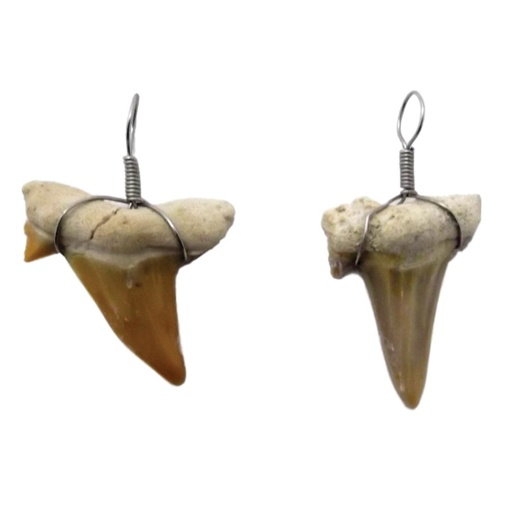 Shark Tooth Necklace Pendant with Wire Wrap - 6 Pack