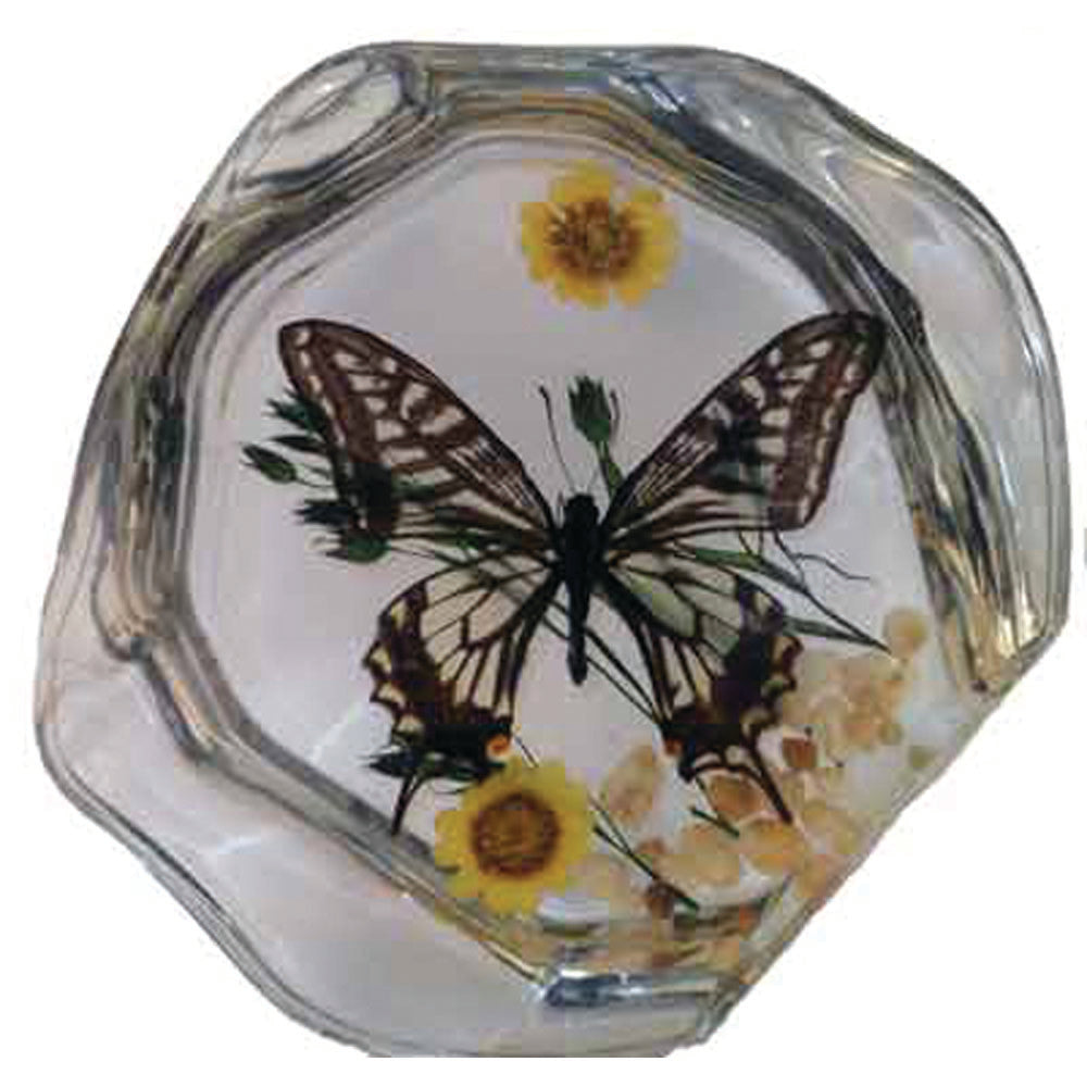 Butterfly Desktop Decoration