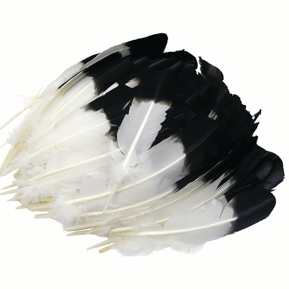 Imitation Eagle Quills - Black & White Long Feathers for Decorations & Ceremonies