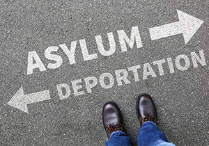 Asylum Litigation