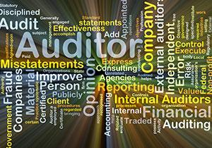 <!--NYC 8-21-19-->Developing An Audit Program<p><em> Also Featuring Peer Review Update </em> </p>