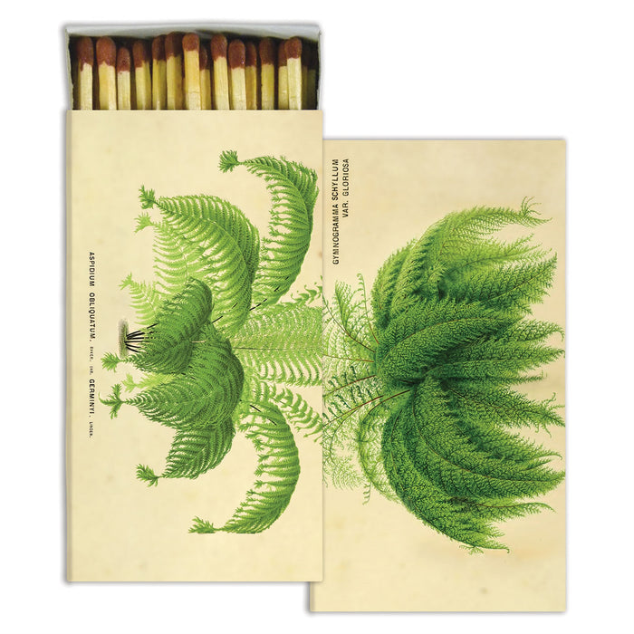FEATHER FRONDS BOXED MATCHSTICKS