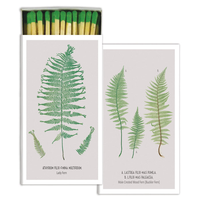 LONG FRONDS BOXED MATCHSTICKS