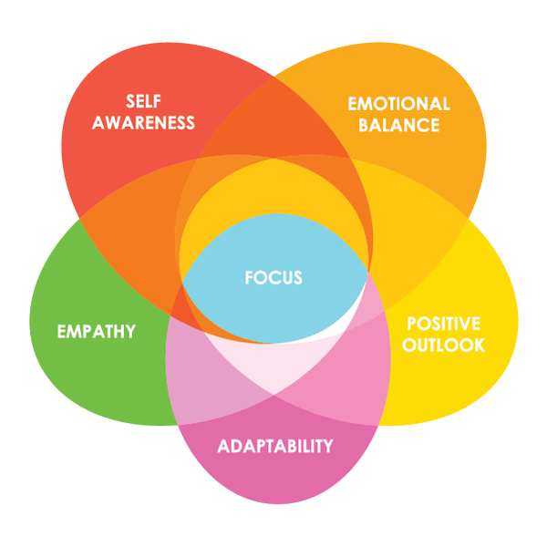 Foundational Skills of Emotional Intelligence* (course consists of 6 online paths)