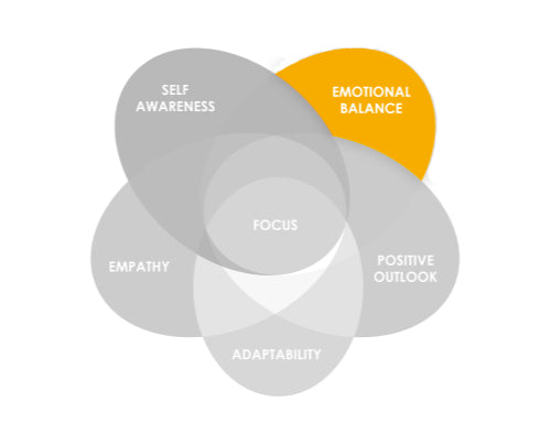 Emotional Balance (two-week facilitated online course)