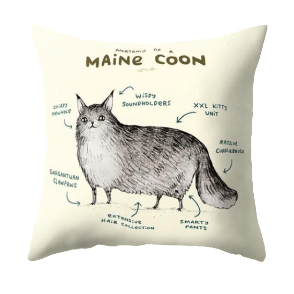 Maine Coon Pillow Case | NineLivesCats
