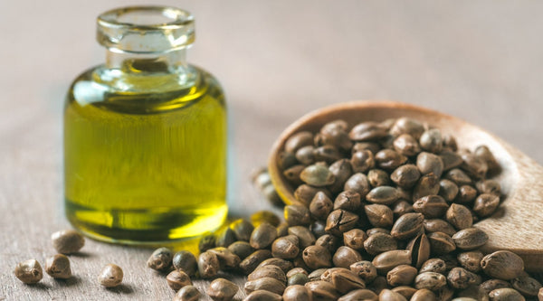 Benefits of Hemp Seed Oil For Your Skin