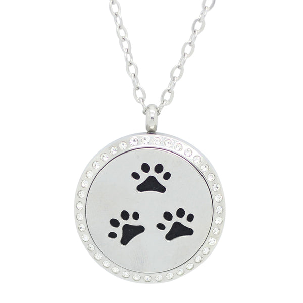 PAWS LOCKET