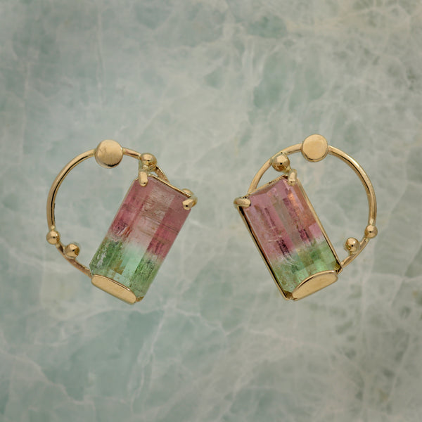 Extraordinary Bicolor Tourmaline earrings