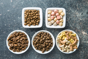 Natural Ingredients for Holistic Pet Care