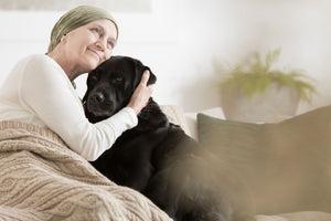 Therapy Pets: Why We Need the Pets We Love