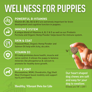 Puppy Multivitamins - 120 Grain-Free Multi Vitamin Soft Chews - Puppy Vitamins and Supplements + Glucosamine Chondroitin MSM Hip and Joint Supplement, Salmon Oil Omega 3, Probiotics for Dogs