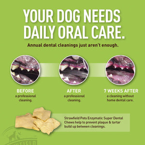 Enzymatic Dog Dental Chews – 30 Natural Rawhide Teeth Cleaning Treats for Dogs – Oral Care Enzyme Brushing Chew, Bad Breath Freshener Treatment, Tartar Cleaner, Plaque Remover
