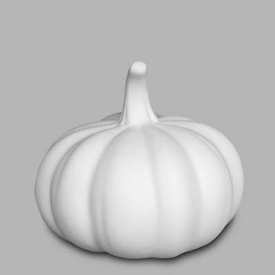 Squatty Pumpkin  6cs