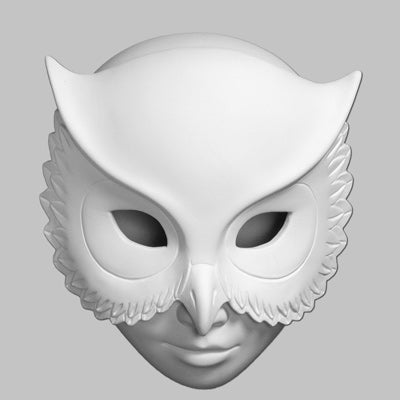 Owl Mask Box  6cs