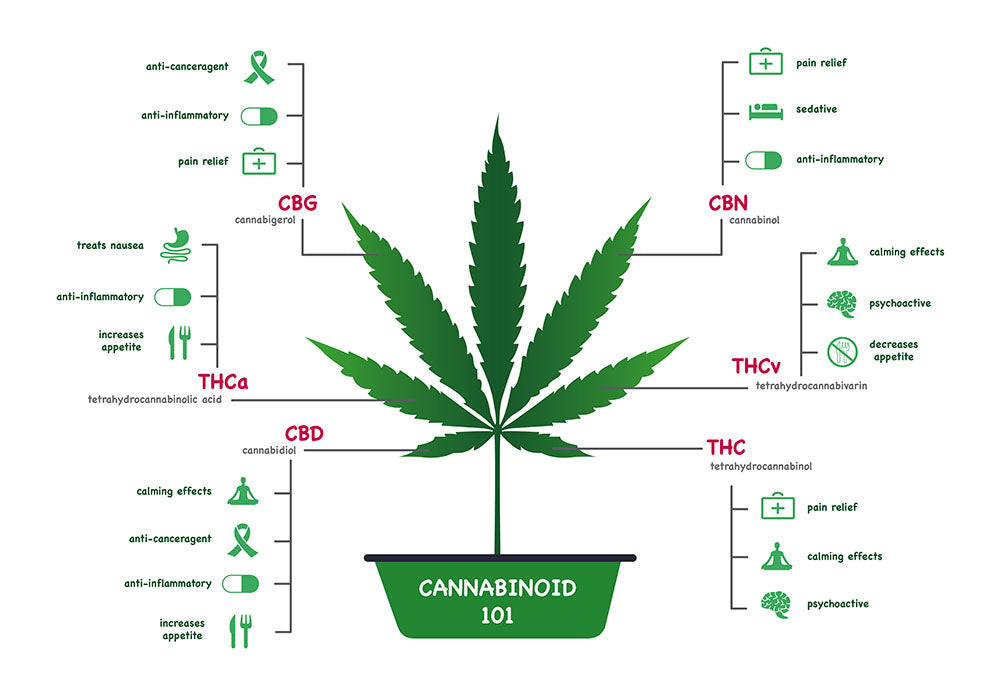 CBD-Leaf-Elements