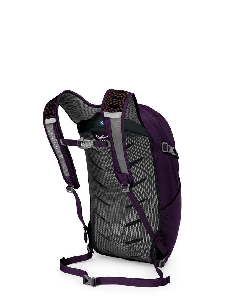 Osprey daylite plus amulet purple colour backpack back corner view