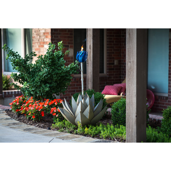 Blue Agave with Torch