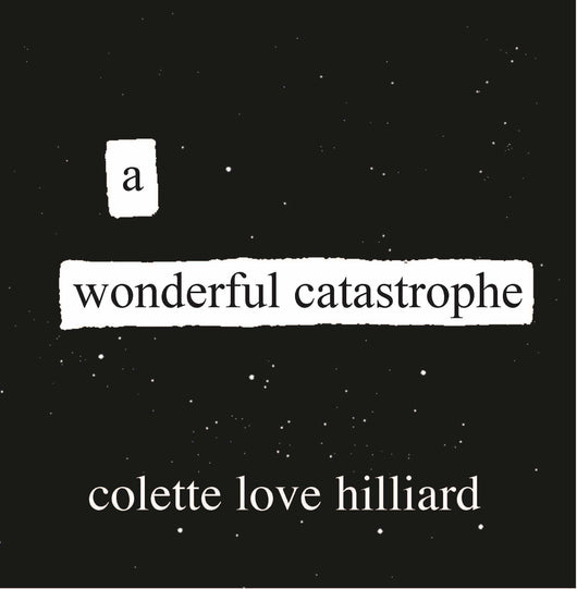 A Wonderful Catastrophe by Colette Love Hilliard - ArtWeAre
