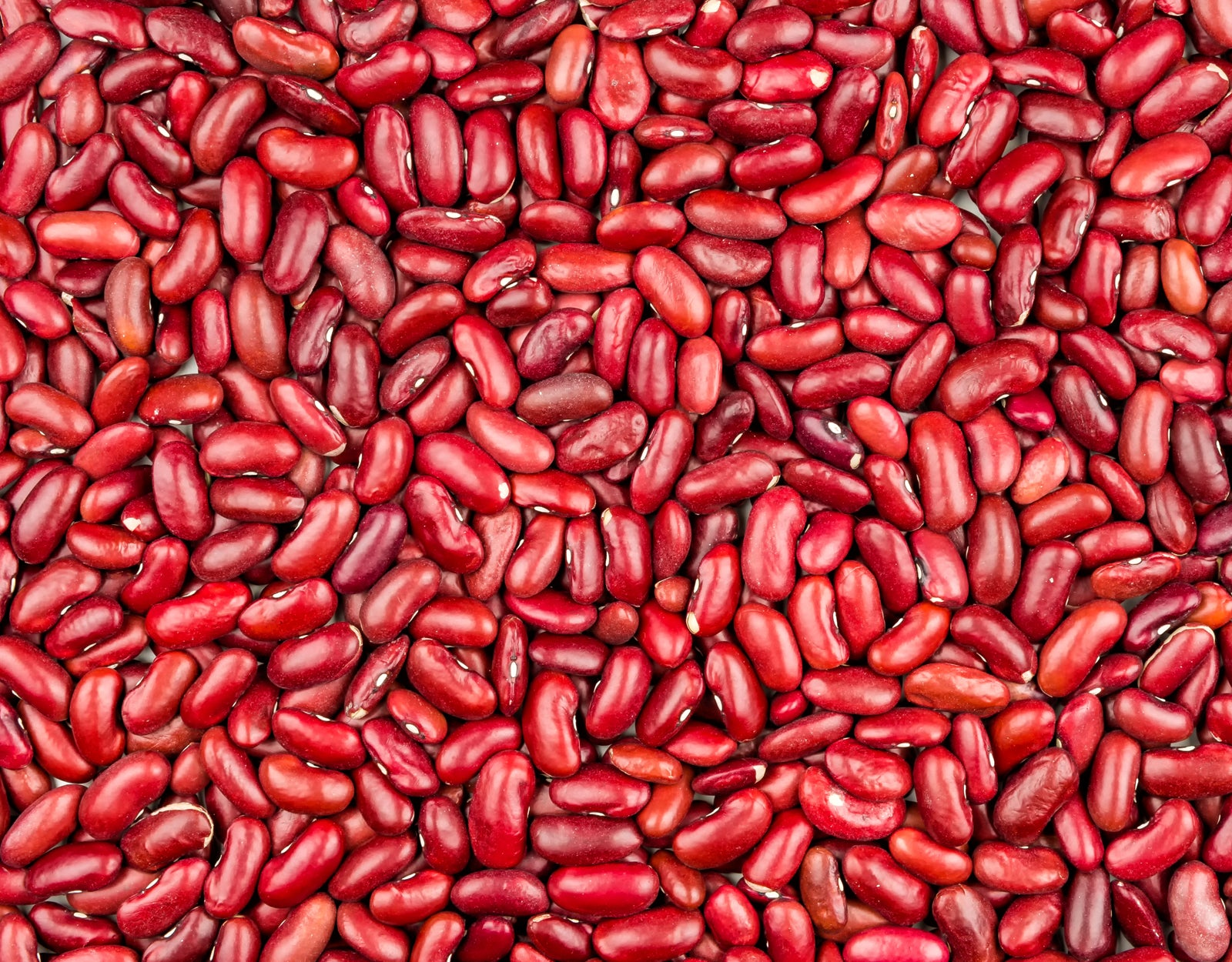 Image result for Kidney Beans
