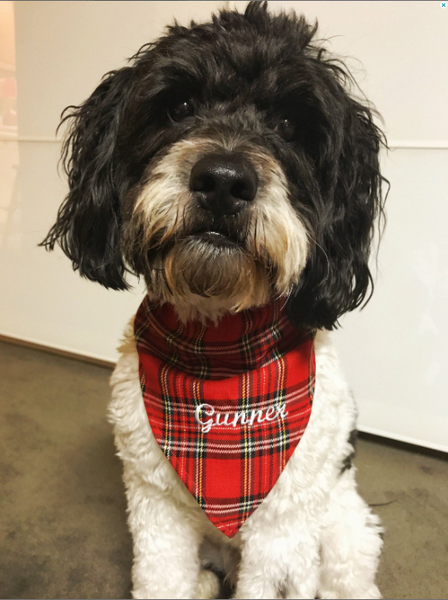 Embroidered Holiday Plaid Dog Bandana