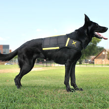 Load image into Gallery viewer, Are you looking for a dog losing weight vest? Or how about a training vest for dogs? This vest is great for anxiety, muscle, calming, stress and walking. Great for K9's that train, workout and sport dogs.