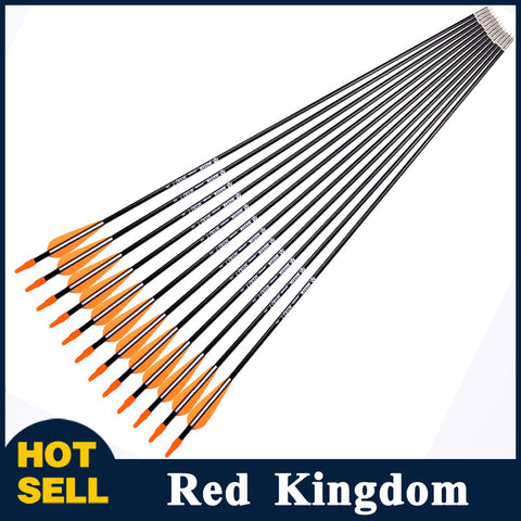 "24 Pcs 31"" Fiberglass Arrow Spine 700 For Recurve Bow or Long Bow"