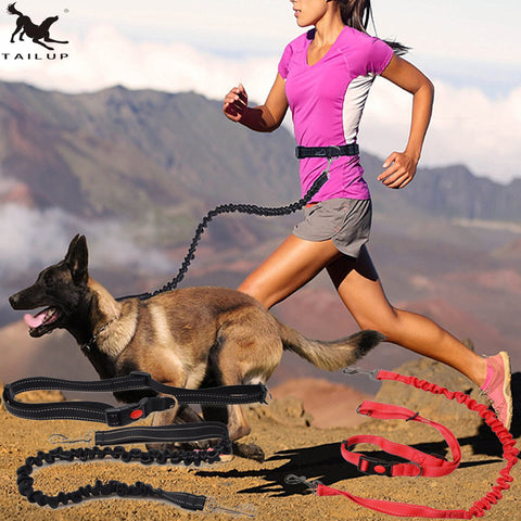 Dog Running Leashes Hands Freely Walking Dog Leash Rope with Reflective Jogging Dog Collars Leash CL109