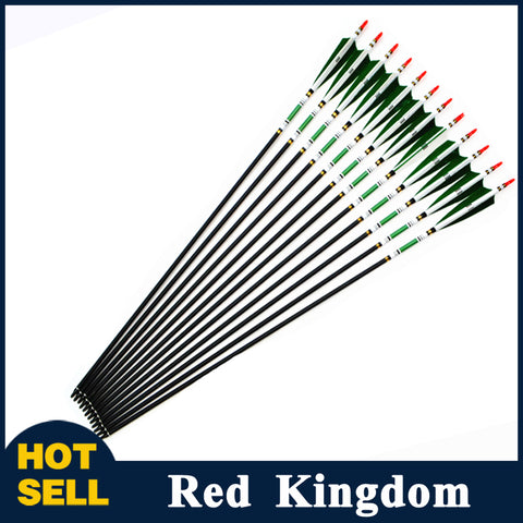 "12 Pcs 31.5"" Carbon Arrow 5 Colors Spine 500 Changeable Arrow Head Turkey Feather OD 7.6mm"