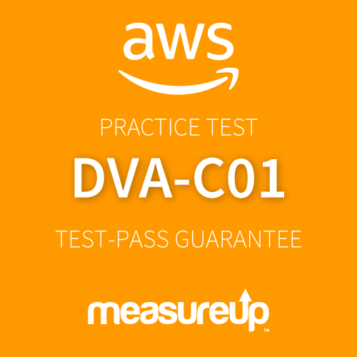 AWS Certified Developer - Associate Practice Test
