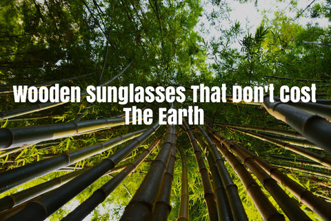 Bamboo forest - Bamboo Sunglasses